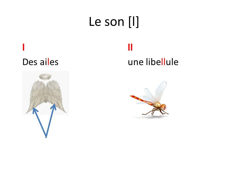 Le son [l] l ll Des ailes une libellule